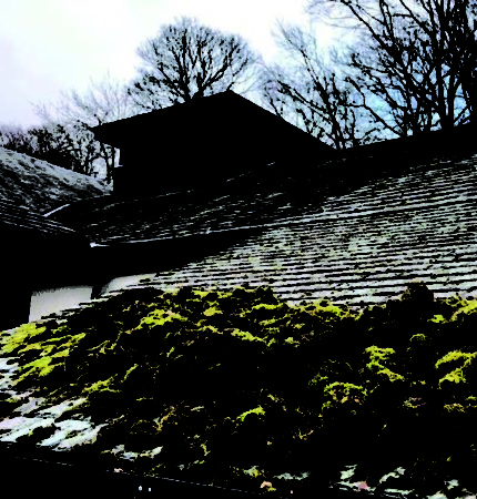 The Thatre by the lake in keswick having its roof cleaned by T J Dixon pressure washing servuces